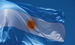 詳解嚴格的阿根廷報關