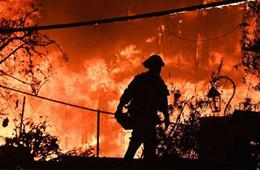 受山火和暴风雪影响,美国部分亚马逊仓库已暂时关停
