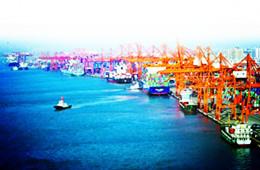 厦门港、天津港、中谷海运携手深耕千亿现代物流产业